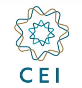 Logo do International Spiritist Council