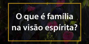 O que é família na visão espirita - 1024x512p 3