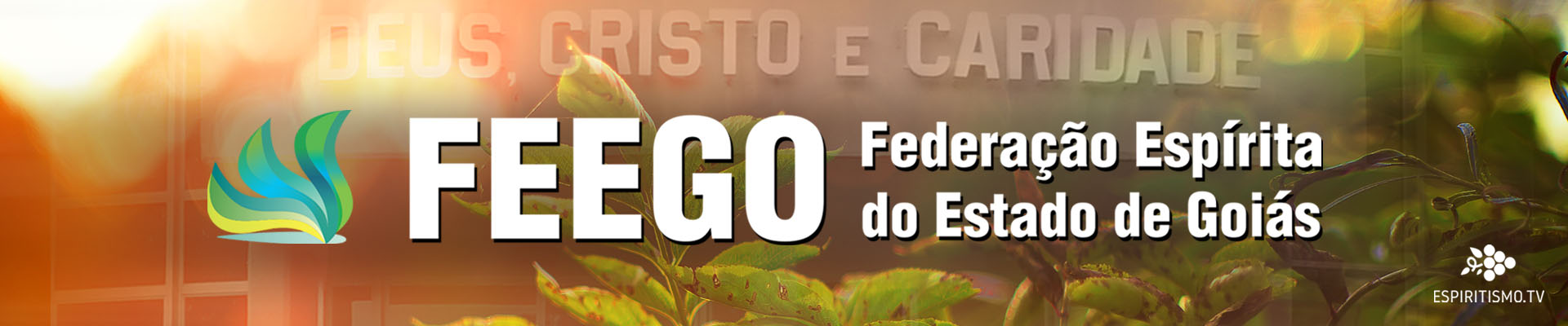 FEEGO - Federação Espírita do Estado de Goiás 1