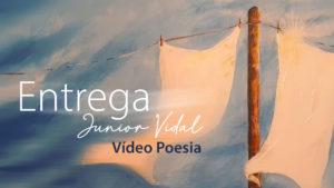 Nossos Vídeos 249